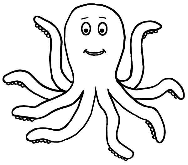 Realistic octopus coloring page clipart panda free clipart for Realistic octopus coloring page