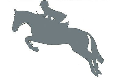 Hunter Jumper Decal Jumping Horse Equine English Equestrian Clipart