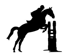 Leaping Animal Silhouette Of Horse  Jumper And Riding Disciplines