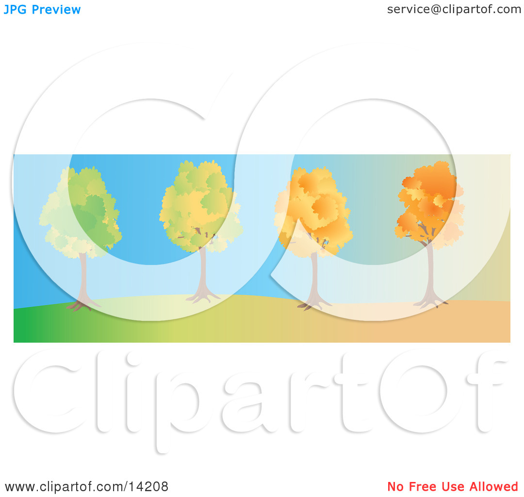 The Same Tree Changing From Summer To Fall With Autumn Foliage Clipart