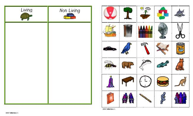 Living Things And Non Living Things  Exercise