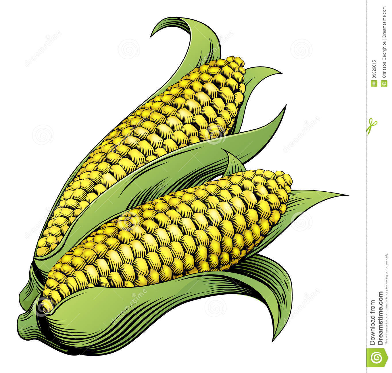 Sweet Corn Clipart - Clipart Suggest