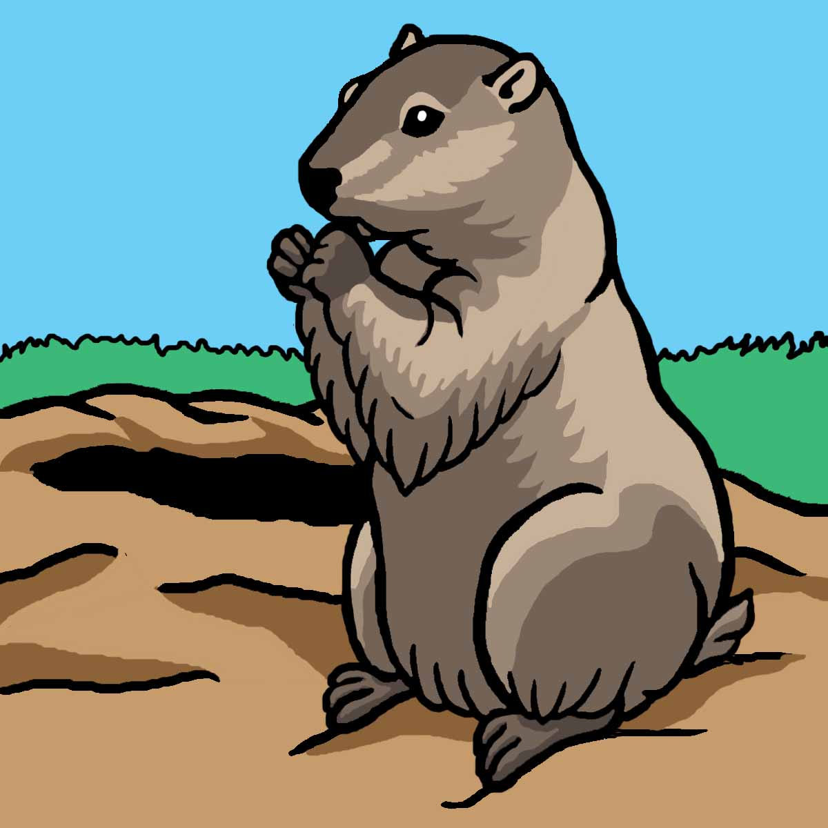 Storytime This Week  Celebrating Groundhog Day   Harris County Public