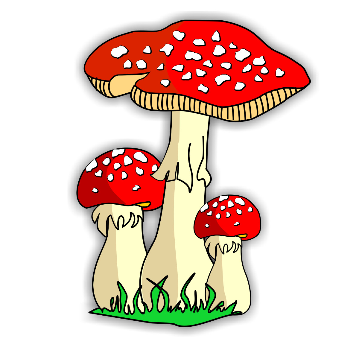 Fungi Clipart   Clipart Best
