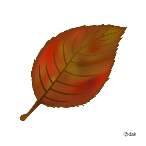 Red Leaf Clipart With Autumn Leaves Clipart