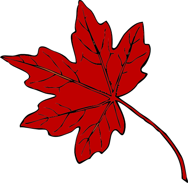 Red Maple Leaf Clip Art At Clker Com   Vector Clip Art Online Royalty