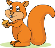 Squirrel Clipart And Graphics