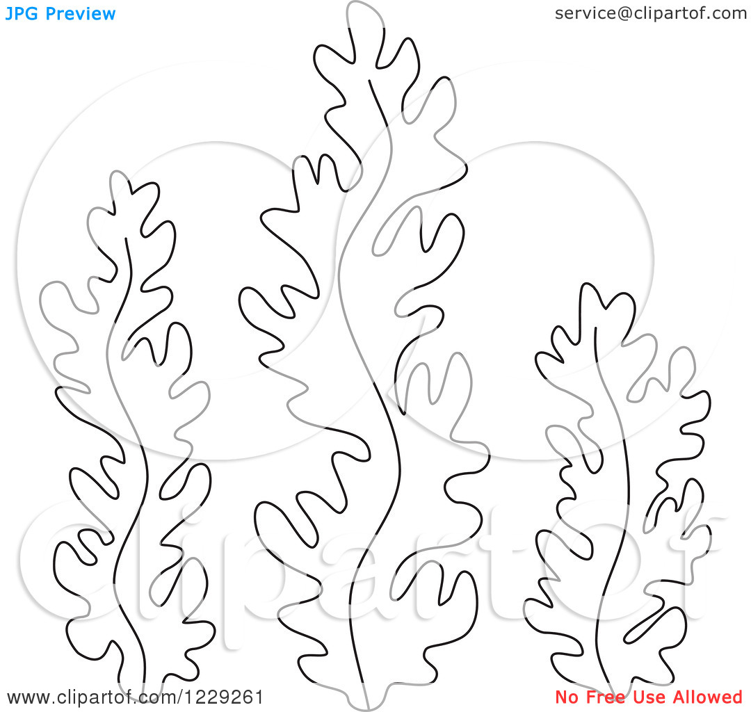 seaweed cartoon coloring pages - photo#32