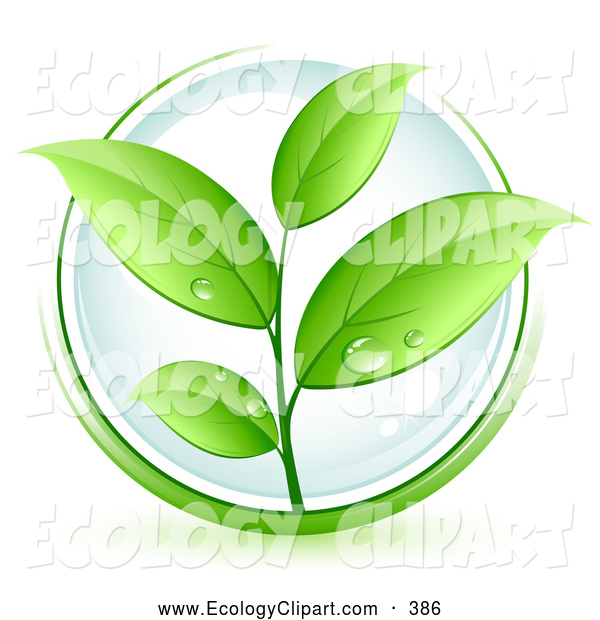 Vector Clip Art Of A Lush Green Organic Plant With Dew On The Leaves