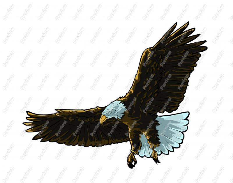Bald Eagle Character Clip Art   Royalty Free Clipart   Vector Cartoon