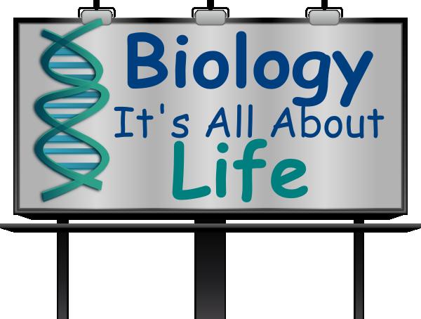 biology lab clip art � cliparts