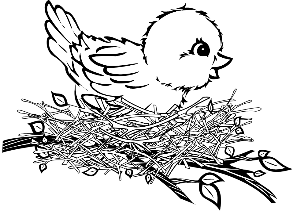 Line Drawing Nest : Bird nest black and white clipart suggest