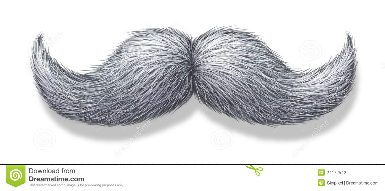 White Moustache Or Grey Hair Mustache On A White Background With A