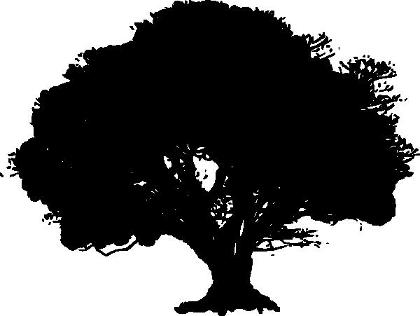Силуэт дуба