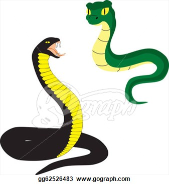 Clip Art   Two Cartoon Snakes Isolated On White Background  Stock