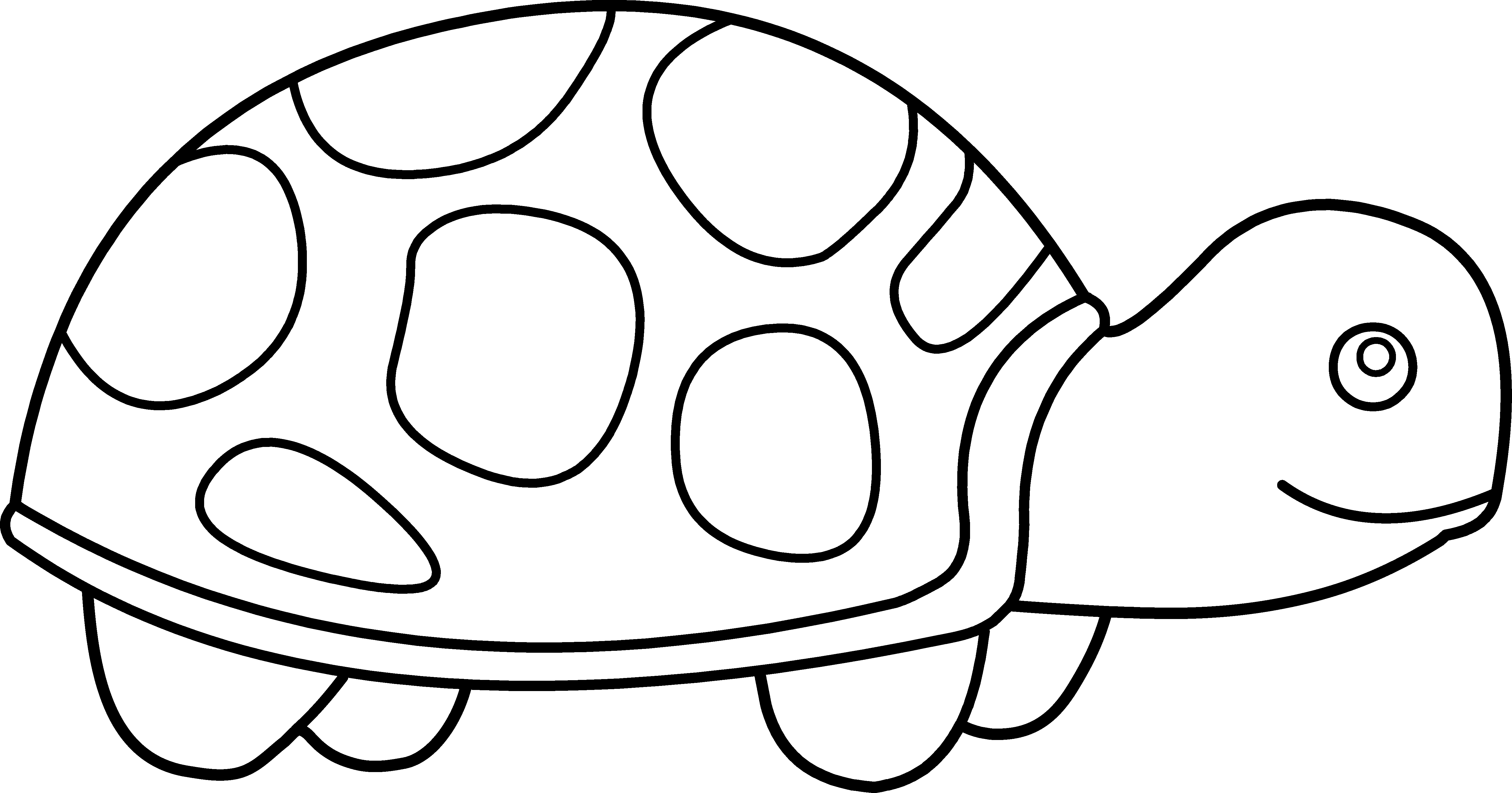 Math Clip Art Black And White Site Clipart Great Cute Turtle Coloring