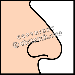 Nose Clipart Black And White   Clipart Panda   Free Clipart Images