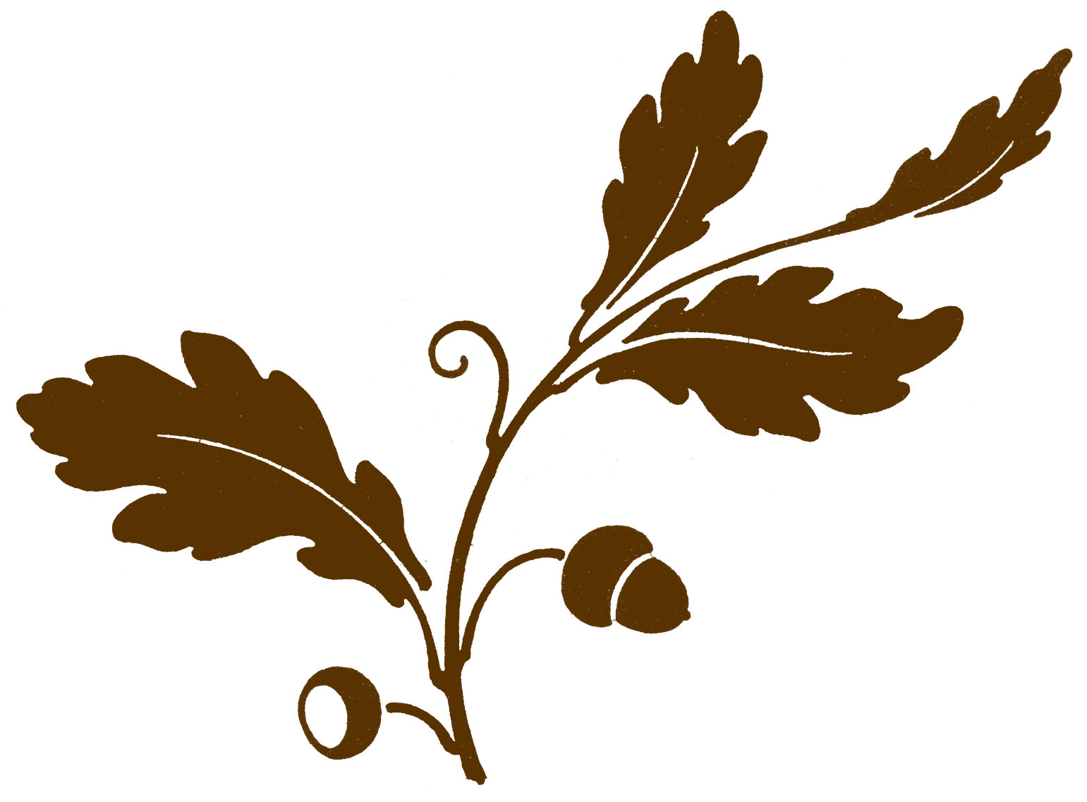 Antique Clip Art   Oak Leaf   Acorns   Silhouette   The Graphics Fairy