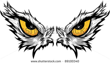 Cartoon Vector Mascot Image Of An Eagle Eyes   89100340   Shutterstock