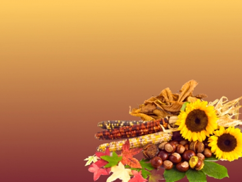 Free Thanksgiving Wallpaper Downloads Clip Art And Decorations For
