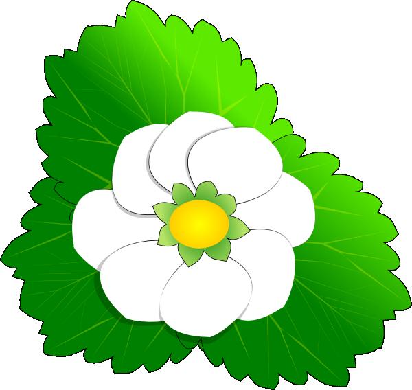 magnolia blossom clip art - photo #27