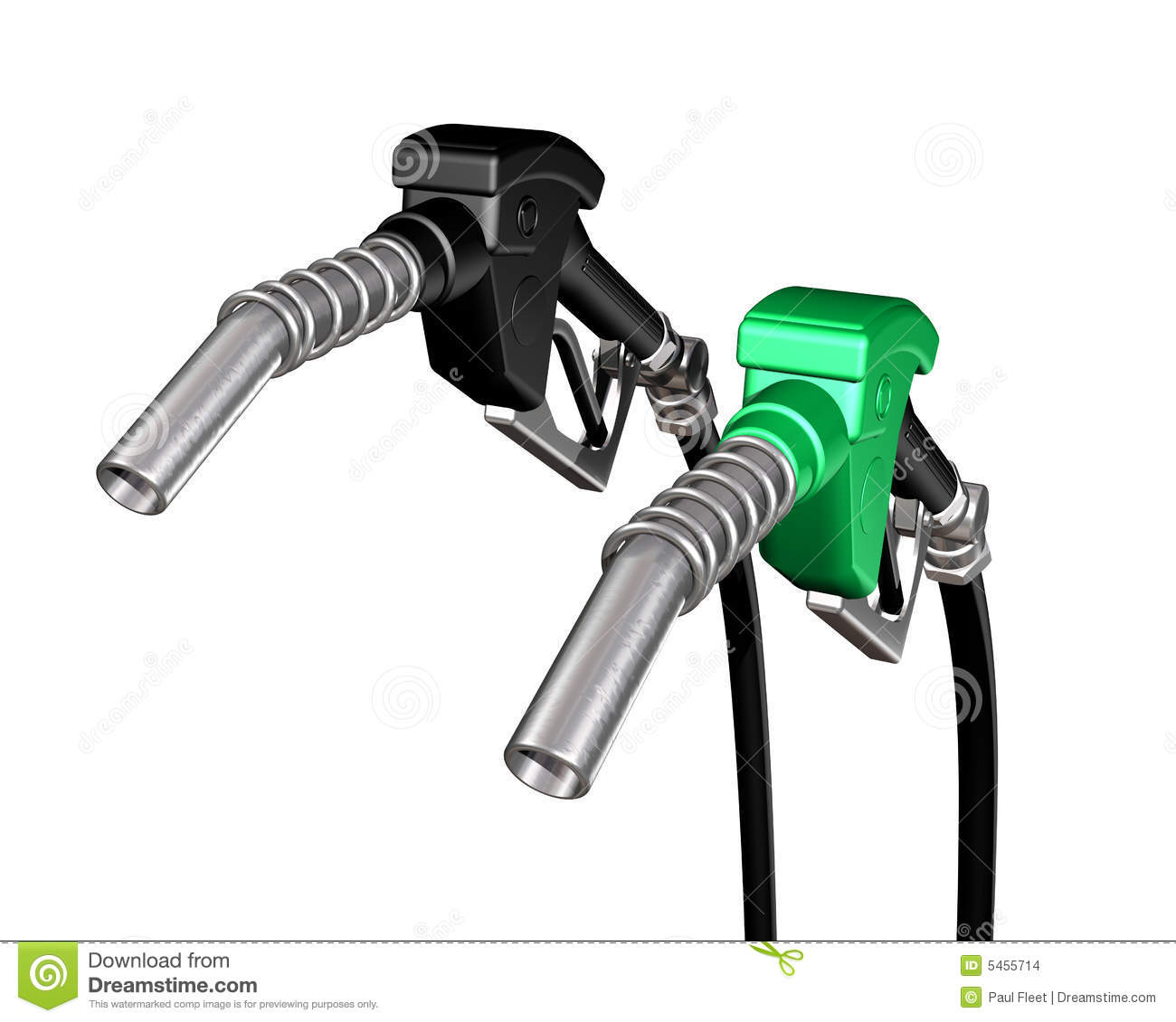 One Diesel And One Gasoline Pump Nozzle Stock Images   Image  5455714