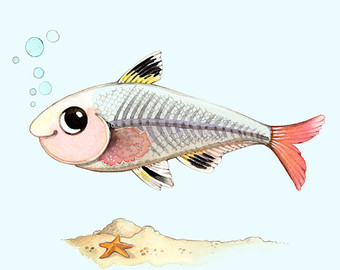 X ray fish clipart clipart suggest for X ray fish