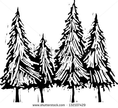 Pine Tree Black And White Clipart - Clipart Suggest