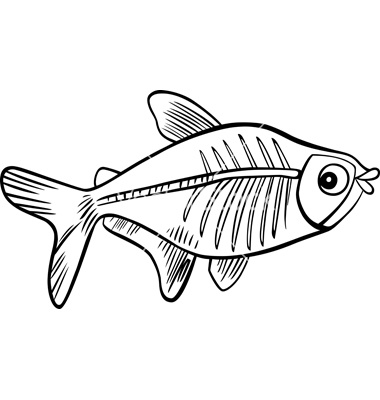 X-ray Fish Clipart - Clipart Suggest