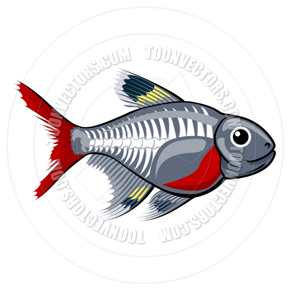 Ray Tetra Cartoon Fish By Geoimages   Toon Vectors Eps  66740