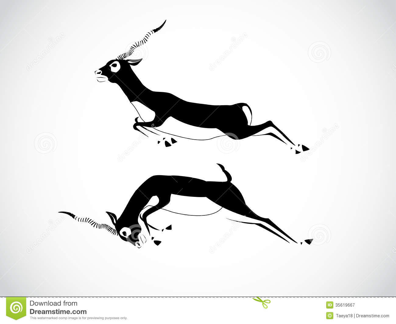 Black Buck Image Graphic Style Deer White Background 35619667 Jpg