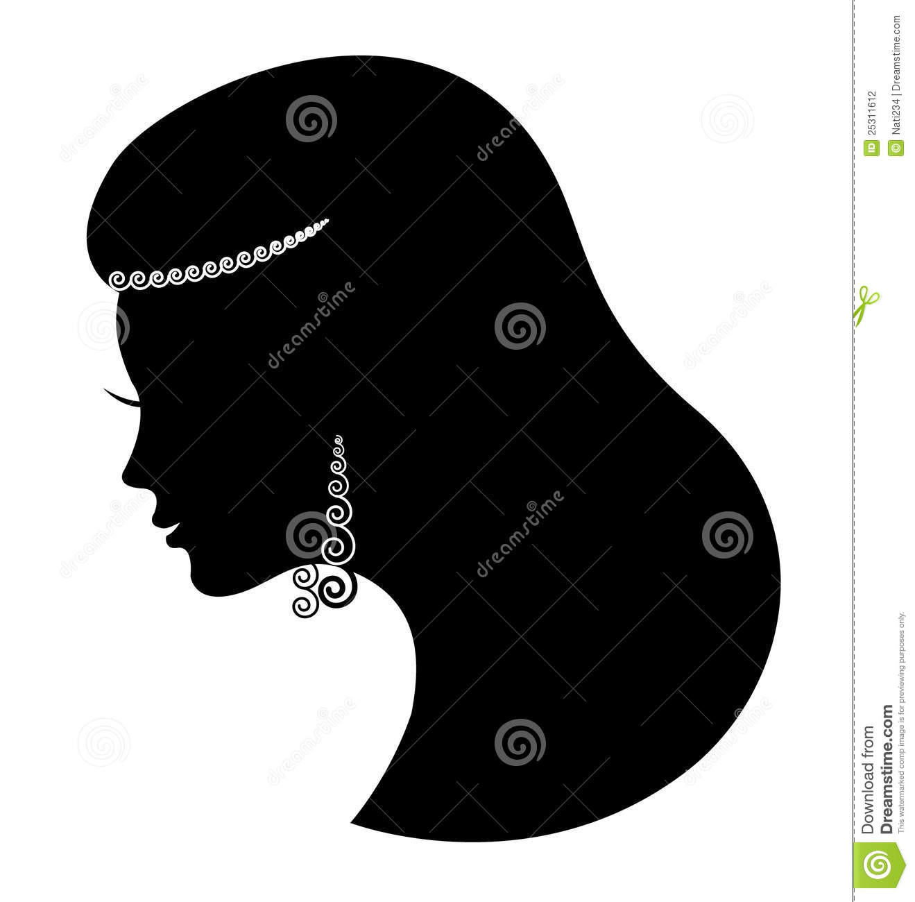 Fashion Jewelry  Silhouette Beautiful Luxury Woman Stock Photography