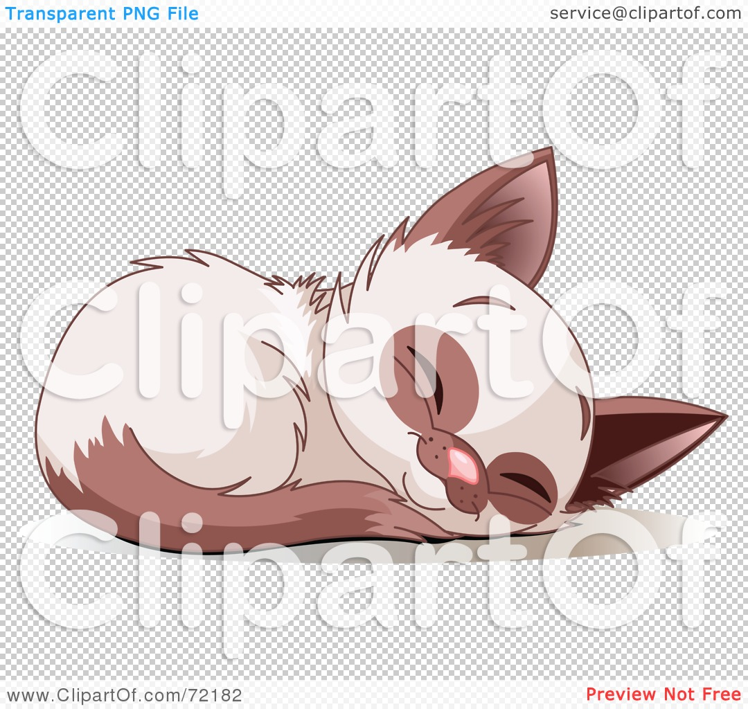 Rf  Clipart Illustration Of A Cute Siamese Kitten Curled Up And Sound
