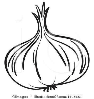 garlic clove clip art � cliparts