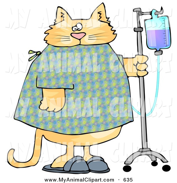 Clip Art Of A Chubby Orange Tabby Cat With An Iv Dispenser In A