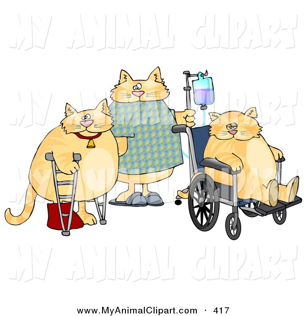 Clip Art Of A Trio Of Orange Cats With Iv Dispensers Crutches Casts
