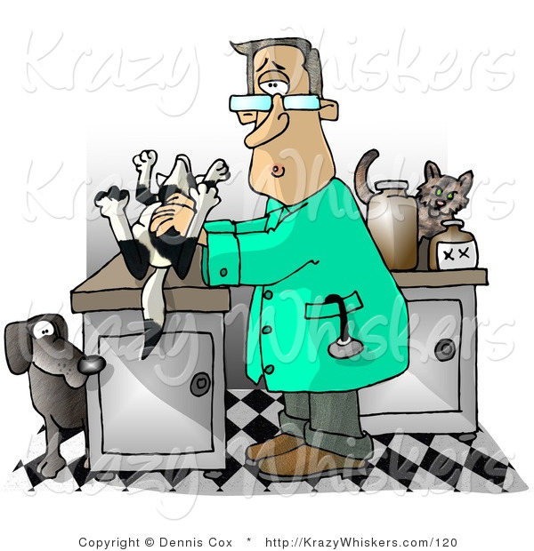 Critter Clipart Of A Male Veterinarian With A Dead Dog On His Clinic