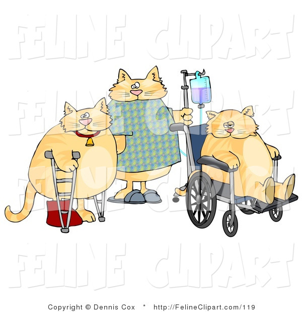 Feline Clip Art Of A Three Hospitalized Orange Cats With Iv Dispensers
