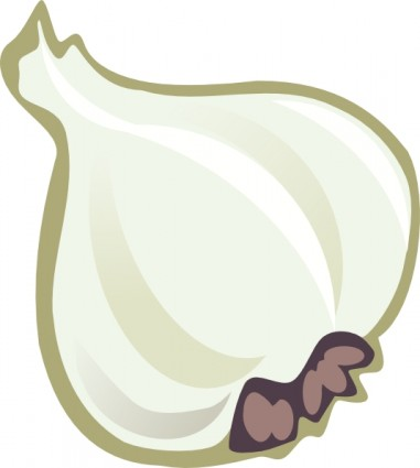 Garlic Clip Art Free Vector In Open Office Drawing Svg    Svg   Format