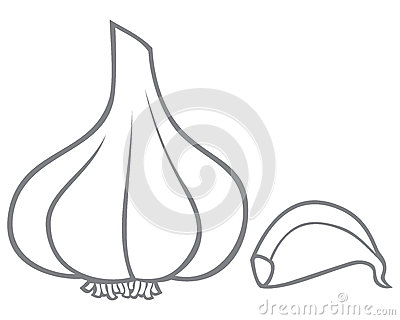 Garlic Clipart Black And White Images   Pictures   Becuo