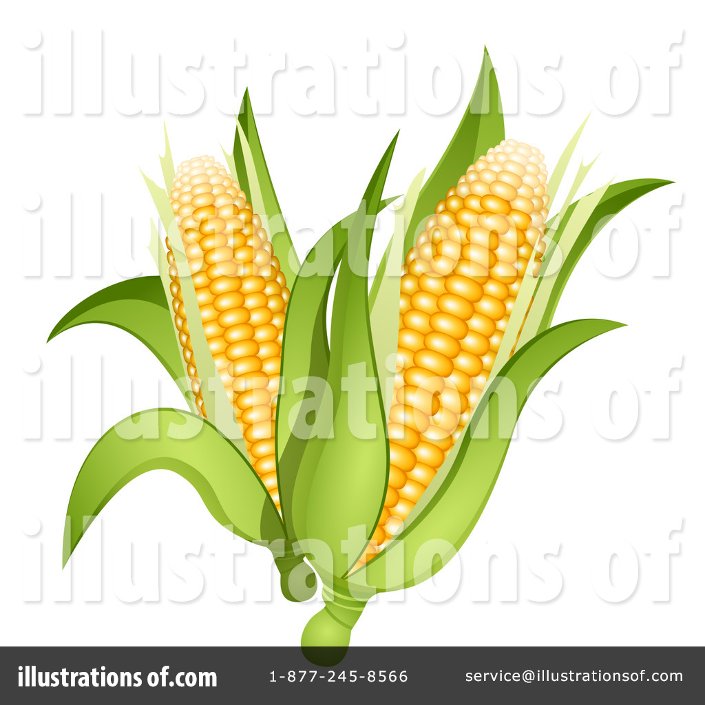Back   Gallery For   Corn On The Cob Clip Art
