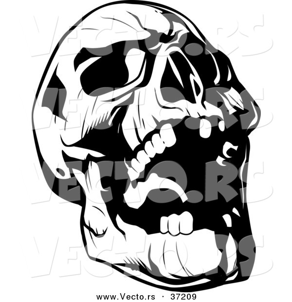Vector Of Evil Skull Laughing   Black And White Line Art By Lawrence