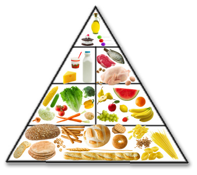 Basically The Food Pyramid Is A Basic Guideline Of What You Should Be