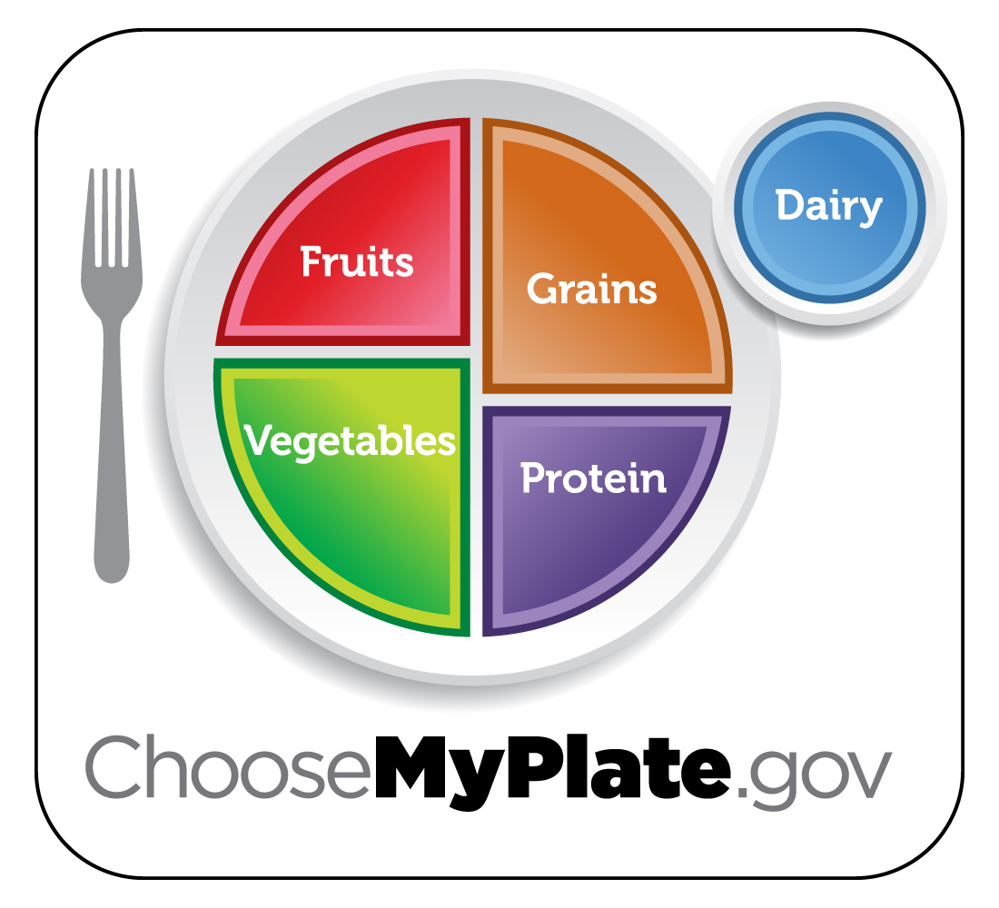 The New Food Plate Replaces The Food Pyramid