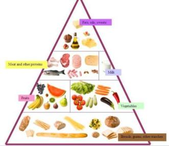 This Food Pyramid Is Divided Into 6 Food Groupswith Each Group