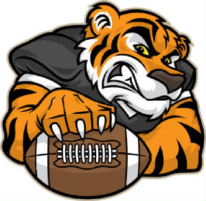 Image result for tiger with football