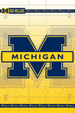 University Of Michigan Wolverines College Football Team Logo Poster
