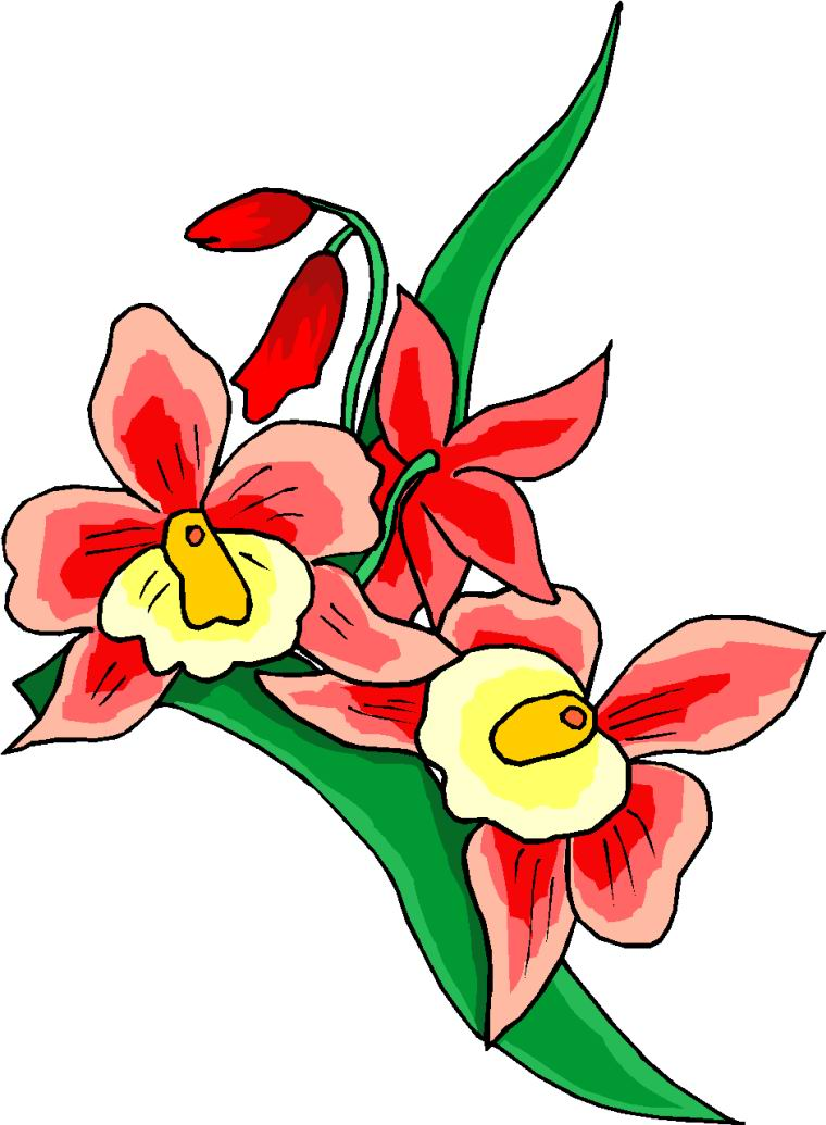 Groovy Flowers Clip Art   Cliparts Co