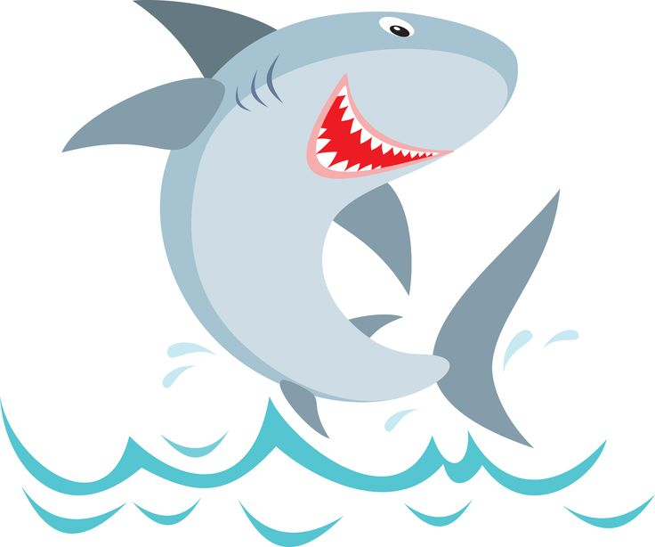 Clipart Sharks Face Official Sharks Clipart Illustration Cute