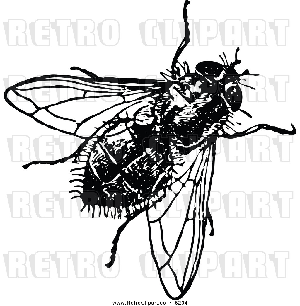 Vector Clipart Of A Retro Black And White House Fly By Prawny Vintage